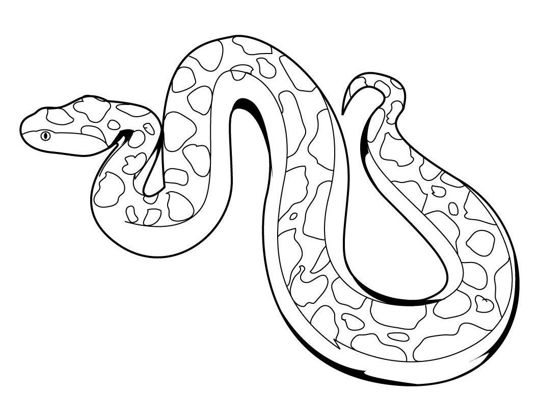 Worksheet. Serpientes para pintar  Imgenes y fotos